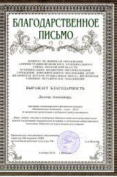 Благодарственное письмо г.Щелково